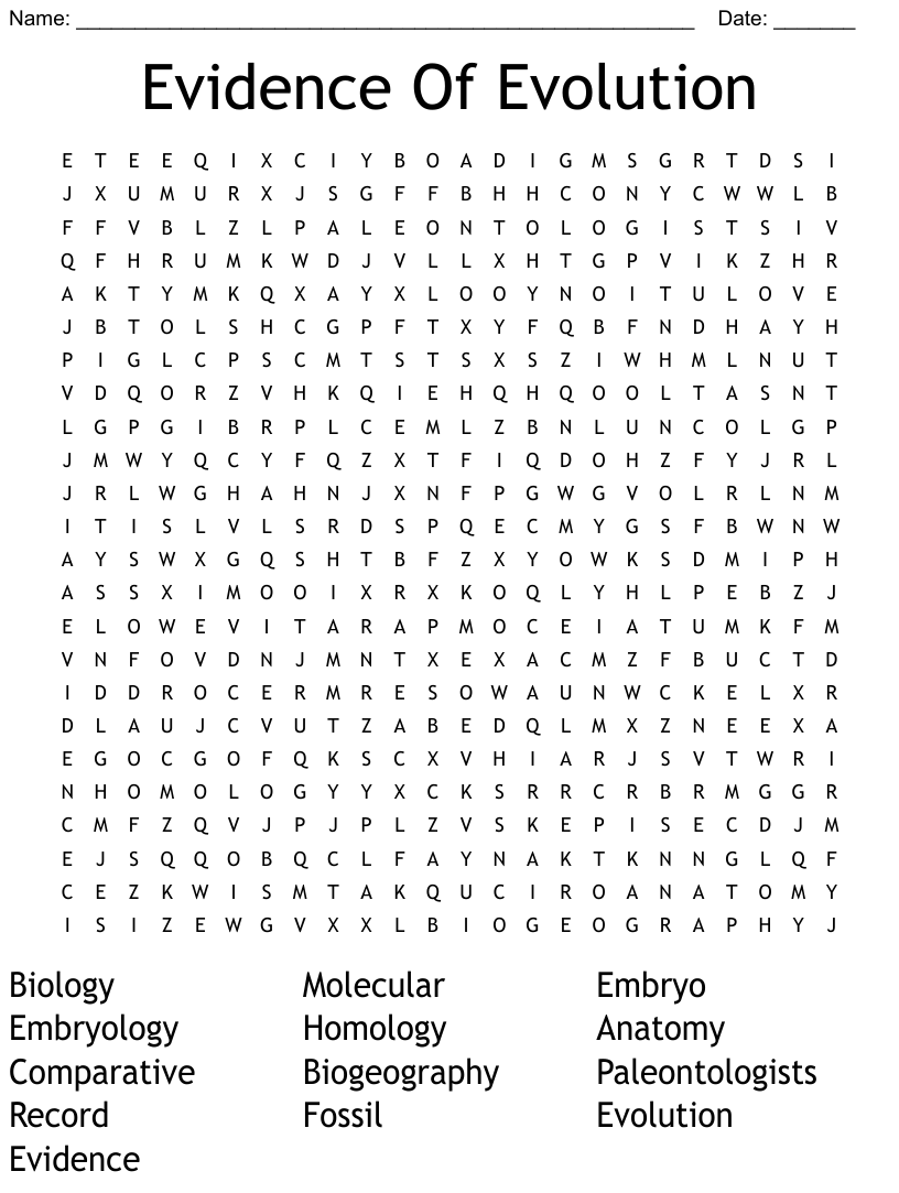Evidence Of Evolution Word Search - WordMint Intended For Evidence Of Evolution Worksheet