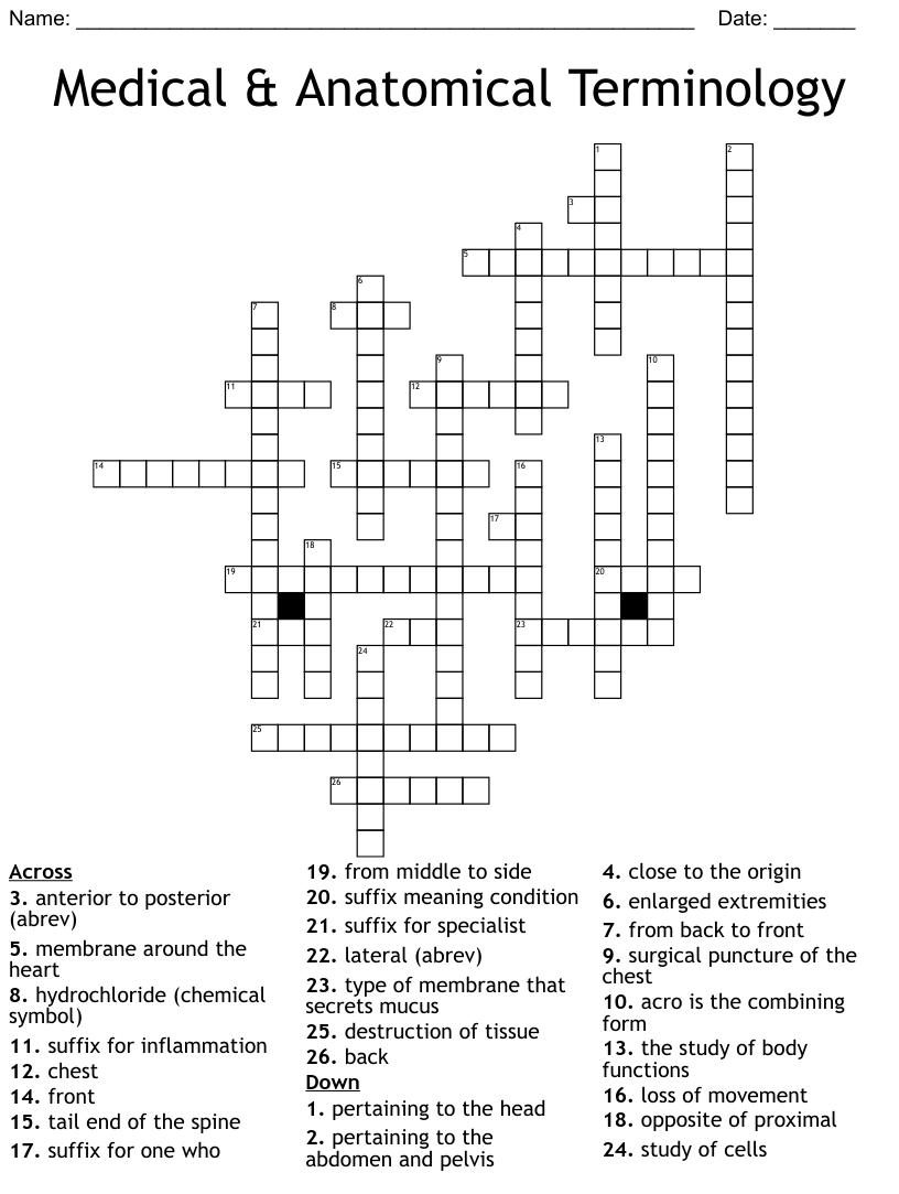 Medical & Anatomical Terminology Crossword - WordMint Throughout Anatomical Terms Worksheet Answers