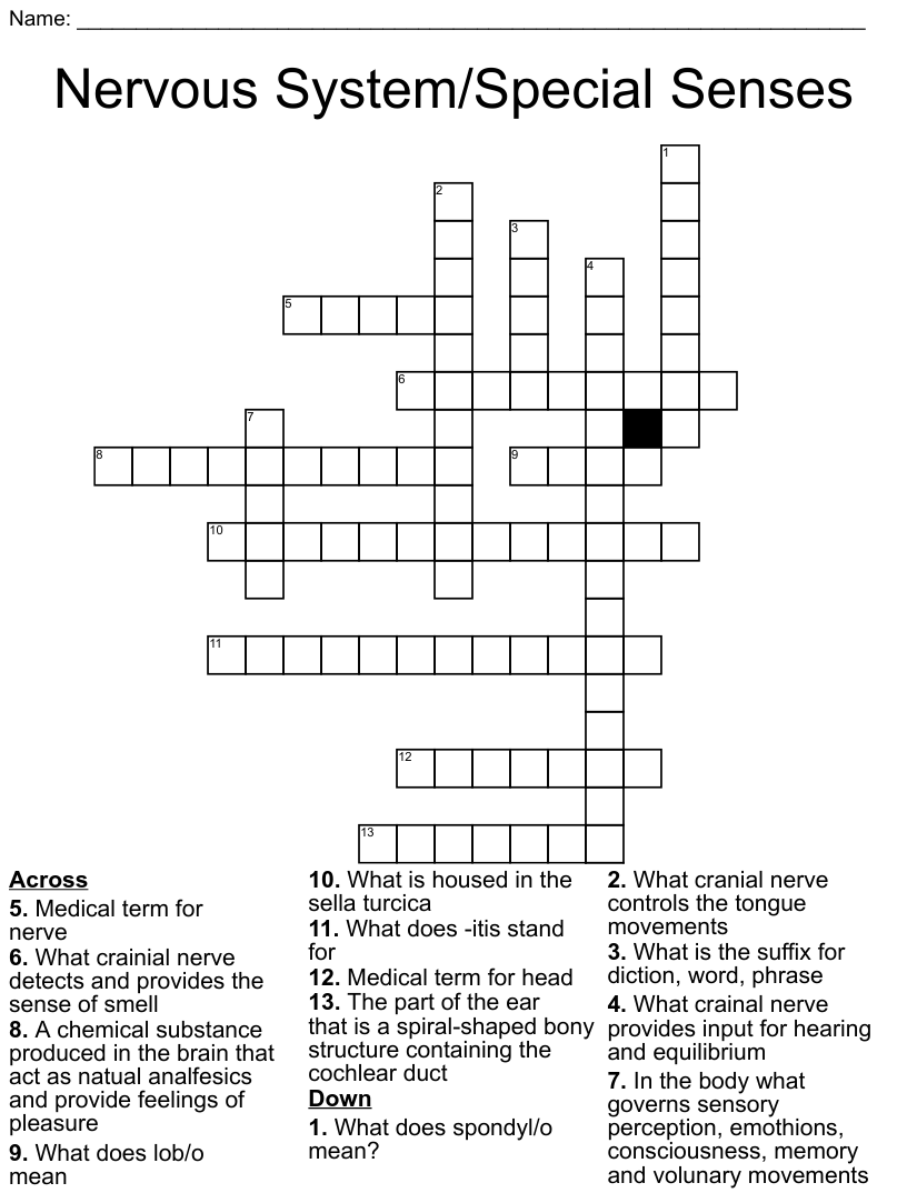 Ch 6 Medical Terminology Crossword - WordMint