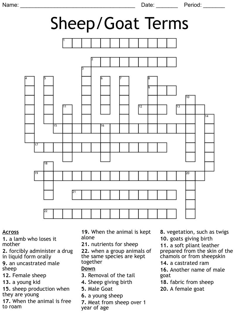 Sheep Goat Terms Crossword Wordmint